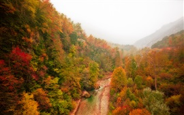 Preview wallpaper Mountain, forest, river, autumn, fog, red leaves