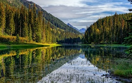 Preview wallpaper Mountains, forest, lake, reflection