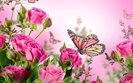 Preview wallpaper Pink roses, flowers, butterflies