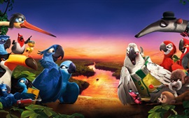 Preview wallpaper Rio 2 HD