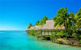 Preview wallpaper Sea, blue sky, resort, bungalow, palm trees, beach