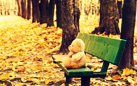 Preview wallpaper Teddy bear, toy, bench, yellow leaves, autumn
