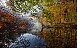 Preview wallpaper Autumn landscape, river, leaves, trees, fog, water reflection