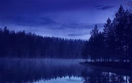 Вечер, лес, река, природа, синий