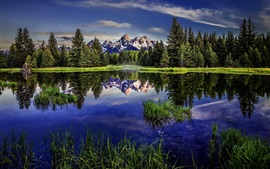 Grand Teton National Park, Wyoming, mountains, lake, reflection, forest