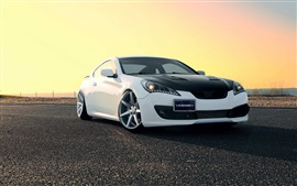Preview wallpaper Hyundai Genesis white black car
