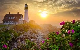 Preview wallpaper Lighthouse, morning, rocks, flowers, sunrise