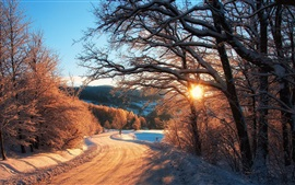 Preview wallpaper Nature winter, snow, trees, forest, sunset rays