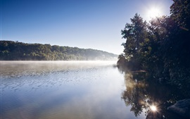 Preview wallpaper Sunrise, forest, river, mist, morning