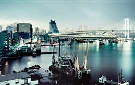 Preview wallpaper Tokyo, Japan, Rainbow Bridge, boats, buildings