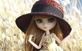 Preview wallpaper Toys doll, hat, grass
