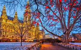 Vienna, Austria, Town Hall, winter, snow, trees, evening, buildings, lights Wallpapers Pictures Photos Images
