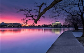 Preview wallpaper Washington, USA, evening, park, trees, lake