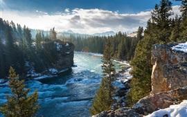 Bow River, Alberta, Canada, montagnes, roches, hiver, arbres
