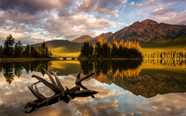 Preview wallpaper Canada, Jasper National Park, Pyramid Lake, trees, mountain, morning light