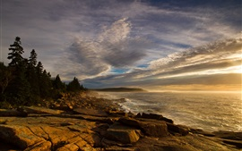 Coast, forest, rocks, sea, waves, sky, clouds, dusk