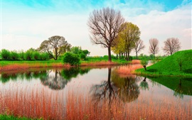 Preview wallpaper England, nature spring, trees, river, grass