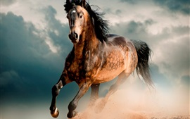 Preview wallpaper Horse, mustang, desert, gallop