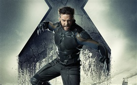 Preview wallpaper Hugh Jackman, X-Men: Days of Future Past
