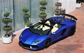 Lamborghini Aventador LP700-4 matte blue supercar