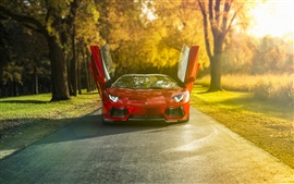 Preview wallpaper Lamborghini Aventador LP700-4 red supercar, morning sun