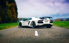 Preview wallpaper Lamborghini Aventador white supercar back view
