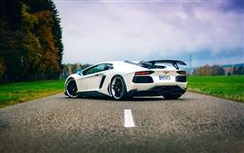 Lamborghini Aventador vista supercarro branco de volta