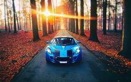 Preview wallpaper Lotus blue car, autumn, road, sunlight, trees