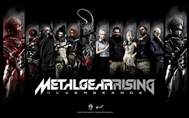 Preview wallpaper Metal Gear Rising Revengeance, PC game HD