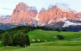 Montañas, bosques, árboles, casa, verano