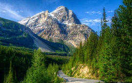 Preview wallpaper Mountains, road, forest, Canada, Yoho National Park