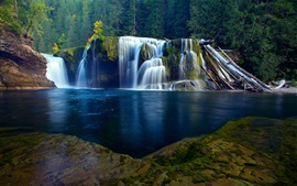 Nature scenery, river, waterfall, forest