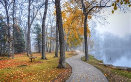Preview wallpaper Park landscape, walkway, trees, benches, lake, autumn