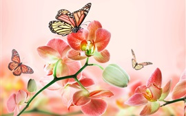 Preview wallpaper Red flowers, orchids, butterflies