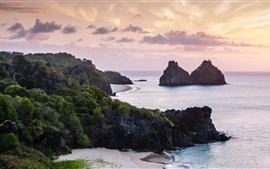Mar, playa, rocas, mañana, amanecer