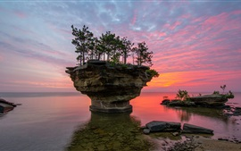 USA, Michigan, Lake Huron, rocks, trees, sunset