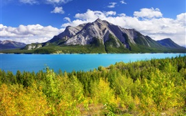 Preview wallpaper Abraham Lake, Banff Park, Alberta, Canada, sky, mountain, lake, trees