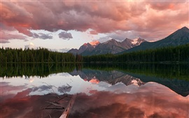 Preview wallpaper Canada, Banff National Park, Rocky Mountains, Herbert Lake, coniferous forest