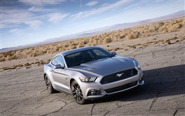 Ford Mustang Muscle silver car front view