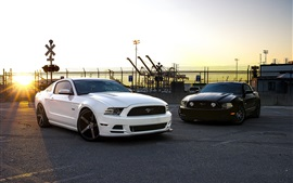 Ford Mustang black and white cars Wallpapers Pictures Photos Images