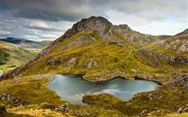 Montagnes, collines, rochers, lacs, mousse, l'herbe