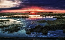 Болото, горизонт, солнце, закат, облака, вода, сумерки
