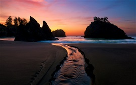 Preview wallpaper Coast, beach, sea, dusk, night, waves, rocks, trees, sunset