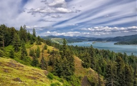 Preview wallpaper Coeur d'Alene Lake, forest, trees, mountains, clouds