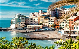 Itália, Cinque Terre, costa, mar, casas, árvores, doca, barco