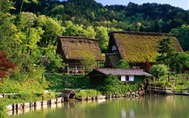 Japan, houses, farm, home, forest