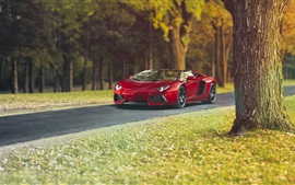 Preview wallpaper Lamborghini Aventador LP700-4 red supercar, autumn, trees