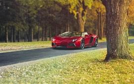 Lamborghini Aventador LP700-4 red supercar, autumn, trees