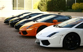 Many Lamborghini Gallardo supercar, front view