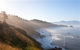 Morning coast, mountains, trees, sea, fog, sunlight